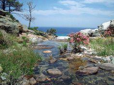 Ikaria, the best island in Greece Ikaria Greece, Places Around The World, Around The Worlds, Zorba The Greek, Santorini Villas, Myconos, Thasos, Karpathos, Greece Islands