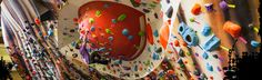 That's a giant eyeball! Climbing Wall, Use Of Plastic, Bouldering, St Louis, Surfing, Walls, Outdoors, Gym, Surf