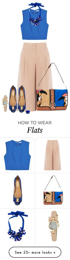 """Blue Flats for Spring"" by ayupsakti on Polyvore featuring BCBGMAXAZRIA, Salvatore Ferragamo, Alice + Olivia, P.A.R.O.S.H., Kate Spade, Janna Conner Designs, Paula Cademartori and flats"