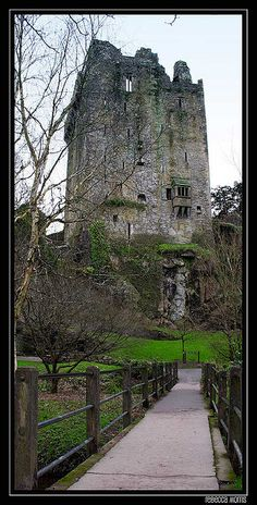 Blarney Castle near County Cork in Ireland. I dangled over the edge to kiss the stone. Somewhat frightening.