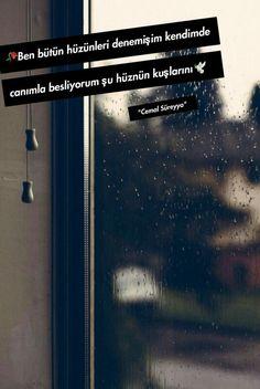 Ben bütün hüzünleri denemişim kendimde, canım la besliyorum şu hüznün kuşlarını..🐞 Karma, Bts, Quote