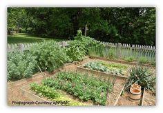 Ephrata Cloister, Herb Garden, Herbalism, Gardens, Herbs, Plants, Garden, Herb, Flora