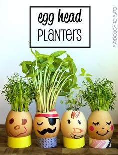 Egg Head Planters – Playdough To Plato - Pflanzideen Garden Crafts For Kids, Projects For Kids, Crafts To Make, Egg Shell Planters, Head Planters, Spring Activities, Toddler Activities, Science For Kids, Art For Kids