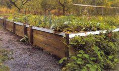 magaságyás | Forrás: Armin Lutz: Hogyan lehetek biokertész? Biofüzetek 26. Vegetable Garden, Vegetables, Crafts, Gardening, Outdoor, Decor, Outdoors, Manualidades, Decoration