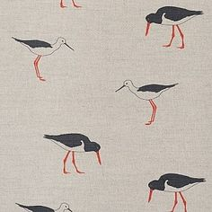 Oystercatchers fabric by Emily Bond http://bit.ly/HtyrCW
