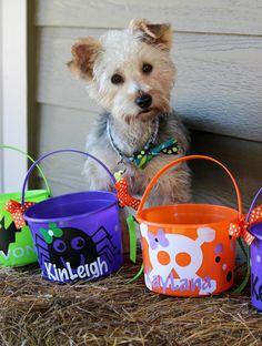 Small personalized Halloween buckets. $10.00. Skull bucket. Spider bucket.