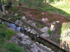 Сад Tamaryszka: ручьевая