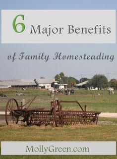 benefits of family homesteading #homestead #sustainableliving #backtobasics