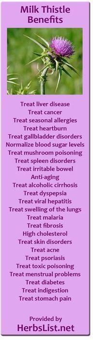 Milk Thistle Benefits- Good for endometriosis!!