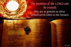 Scripture from the Bible portrayed with inspired pictures Psalms, Lord, Bible, Inspired, Pictures, Inspiration, Biblia, Biblical Inspiration, Lorde