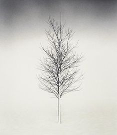 Silent World by Michael Kenna                                                                                                                                                                                 Más