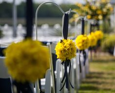 "Yellow ""kissing balls"" Lining the Aisle 