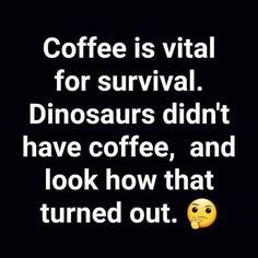 For me it's caffeine because coffee is gross caffeine dinosaurs caffeinesurvival. Thursday Humor F Coffee Talk, Coffee Is Life, I Love Coffee, My Coffee, Coffee Lovers, Funny Coffee, Coffee Meme, Coffee Drinks, Coffee Shop