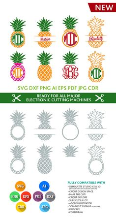 Pineapple SVG Monogram Frames Cut Files - SVG DXF Silhouette Studio Png Eps Pdf Jpg Ai Cdr cuttable for Silhouette Studio, Cricut, Cameo