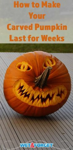 Don't let your carved pumpkin rot away in a few days! Keep your jack-o'-lantern for a few weeks with this preservation method! Halloween Tricks, Halloween Ideas, Preserve Carved Pumpkin, Preserving Pumpkins, Jack O Latern, Pumpkin Carving Contest, Best Seasons, A Pumpkin, Spirit Halloween