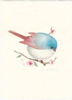 Photo You are in the right place about Bird background Here we offer you the most beautiful pictures Bird Pictures, Pictures To Paint, Watercolor Bird, Watercolor Paintings, Cute Drawings, Animal Drawings, Bird Illustration, Illustrations, Bird Art