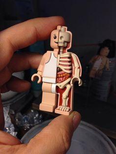 Tiny Lego Man anatomy sculpt by freeny on DeviantArt Lego Custom Minifigures, Lego Minifigs, Lego Duplo, Legos, Lego Creative, Lego Pictures, Amazing Lego Creations, Lego Craft, Lego People