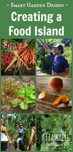 Creating islands of food production allows gardeners to harvest from an area regularly, even if some of the longer-term crops won't produce for years.