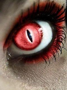 Vampire eyes red contact lenses with demons gloss halloween Vampir mustert rote Kontaktlinsen mit Dämonenglanz Halloween Cool Contacts, Colored Contacts, Cat Eye Contacts, Most Beautiful Eyes, Beautiful Eye Makeup, Amazing Makeup, Pretty Eyes, Cool Eyes, Vampire Eyes