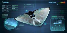 Subnautica Skyray Subnautica Concept Art, Alien Concept Art, Armor Concept, Subnautica Creatures, Curious Creatures, Fantasy Creatures, Futuristic Art, Futuristic Technology, Alien Ship