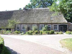 Schoonebeek, Oosterse Bos