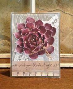 I came, I saw, I created.: Paper Succulent Terrarium and Cards