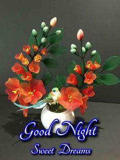 Good Night Image, Good Night Quotes, Good Morning Images, Sweet Dreams, Images Of Good Morning, Images For Good Night