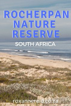 West Coast's Rocherpan Nature Reserve - Roxanne Reid Eco Cabin, Provinces Of South Africa, All About Africa, Wildlife Safari, Cape Town South Africa, Slow Travel, Kruger National Park, Beach Walk, Nature Reserve