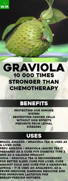 Graviola or also known as soursop is a fruit packed with a lot of healthy nutrients.