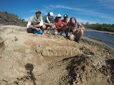 Investigadores hallan un tesoro de fósiles y herramientas primitivas en el Arapey