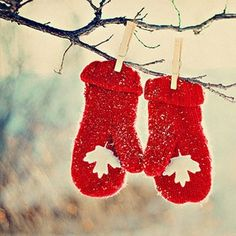 We could have one Canadian mitten & a New Zealand jandal paired together with clothes pins on a rope or branch at our wedding :)