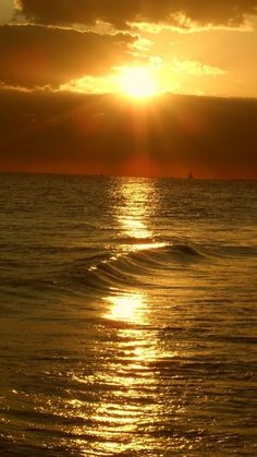 Golden sunset, Siesta Key, Florida