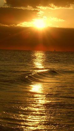 »✿❤️️️️️️️️️️️️️️Golden❤✿« Sunset at Siesta Key Florida                                                                                                                                                     Más