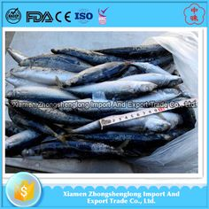 2017 new frozen fish round scad fish from China supplier.