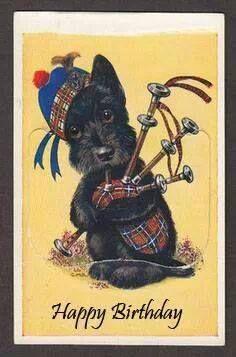 TARTAN: Scottie Dog With Tartan Tam and Bagpipe, Views of Edinburgh Scotland postcard, Tartan, Plaid, Le Clan, Scottish Animals, Pitbull, Vintage Dog, Westies, Dog Art, Dog Life