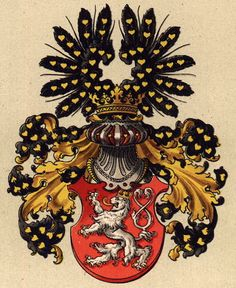 My Bohemian History Heraldry for the Kingdom of Bohemia Kingdom Of Bohemia, History And Heraldry, Asian History, British History, Local History, Historical Women, Historical Photos, Strange History, History Facts