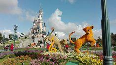#Disney