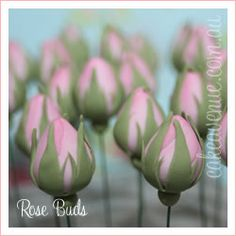 Sugar Rose Buds Idea for pulled sugar...