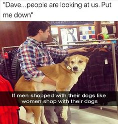 A Collection of The Funniest Memes on the Internet Right Now - We Should Be Working Dog Memes, Funny Memes, Hilarious, Funniest Memes, Fine Quotes, Dump A Day, Great Memes, Let You Down, Pet Treats