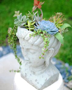 """A different planter makes a great accent in your patio. Gloribell Lebron on Instagram: """"I've changed this planter's hat a couple of times. But the #succulents that are dressing this pensive lady suit her perfectly. Hope you all had a great day!"""""""