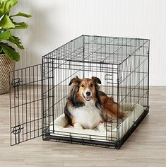 Basics Single-Door Folding Metal Dog Crate