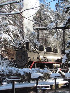 Snow-covered Dollywood Express