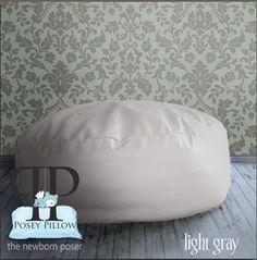 $75 Image of Posey Pillow ~ Light Gray ~ Studio Size  ~ Sale Price
