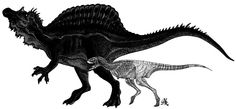 Spinosaurus size compared with a Rugops