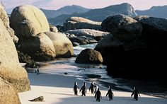 South Africa Holidays - Holidays to South Africa 2015 / 2016 - Kuoni