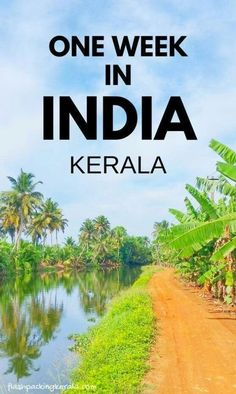 Travel India for one week in India in south asia with best things to do in Kerala itinerary. Best places to visit when backpacking India with trip planning tips. outdoor travel destinations on a budget with culture and beautiful places in incredible india Kerala Travel, India Travel Guide, Asia Travel, Cool Places To Visit, Places To Travel, Travel Destinations, Travel Tips, Travel Ideas, Travel Hacks