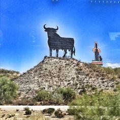 #Jerez