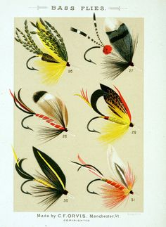 Fishing with the fly: Sketches by lovers of the art, with illustrations of standard flies. Collected by Charles F. Orvis & A. Nelson Cheney (1883)