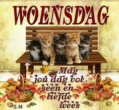 Good Night Blessings, Morning Blessings, Goeie Nag, Goeie More, Afrikaans Quotes, Special Quotes, Happy Wednesday, Good Morning Quotes, Blessed