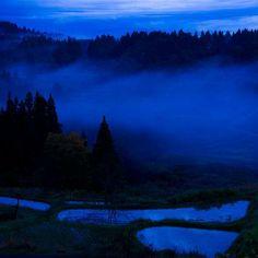 Blue landscape.  Live Your Life in Color! #color #blue